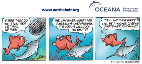 Money in the Water: Global Subsidy Reform & the Fishing Industry